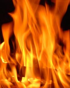 flames-ts-101067739-239x300